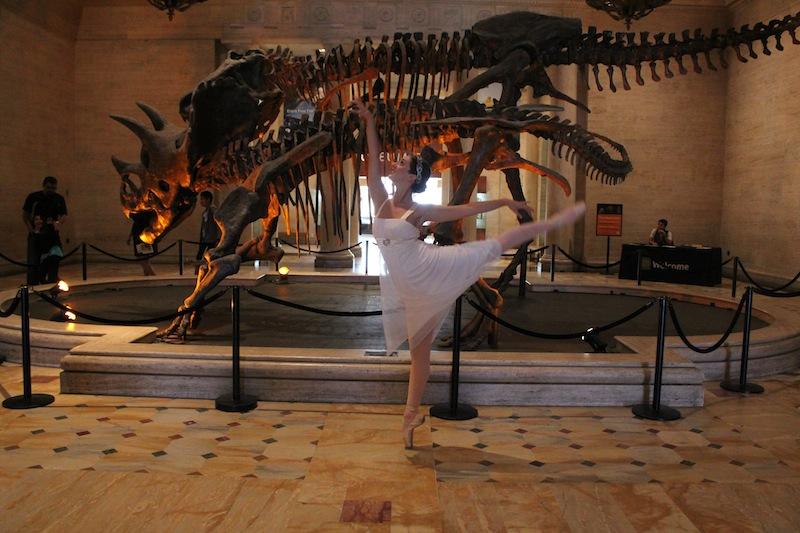 CapuletInTheCity -History Museum Dinosaur