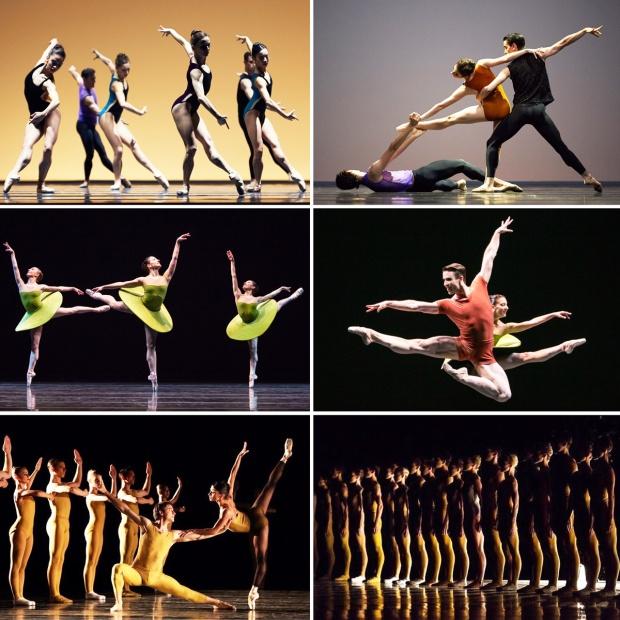 celebrate-fostyhe-company-collage